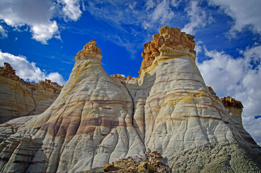 Fossil Forest Hoodoos